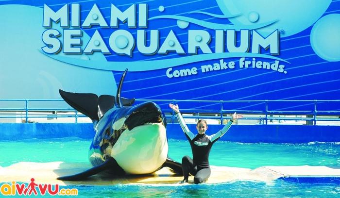 Thủy cung Miami Seaquarium