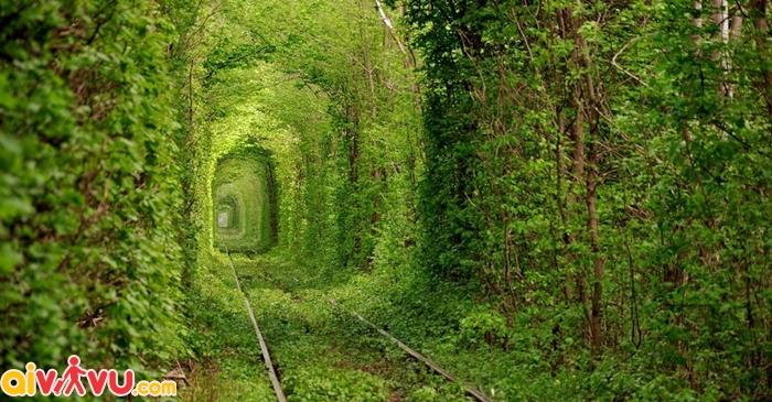 Đường hầm tình yêu Tunnel of Love