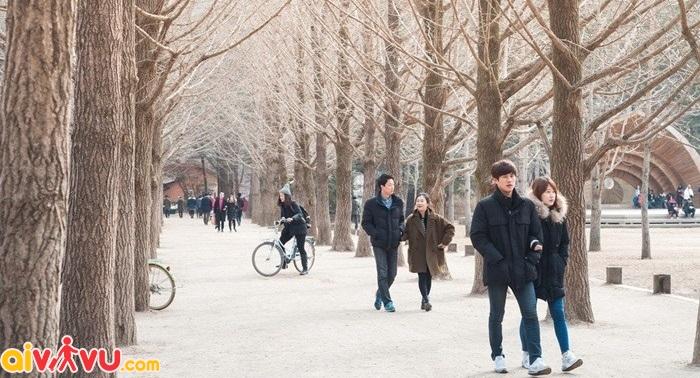 Hàn quốc là quốc gia sở hữu nhiều phong cảnh đẹp, nhất là mùa đông