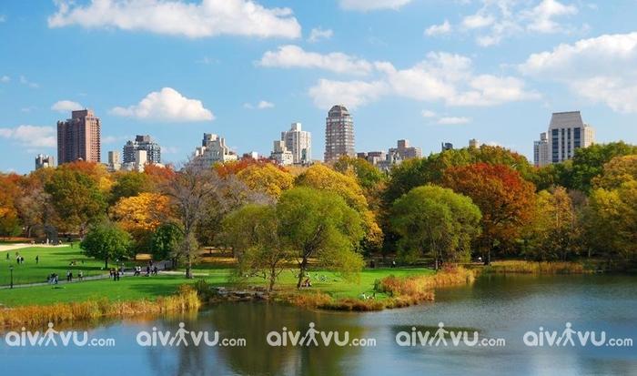 Công viên trung tâm Central Park New York