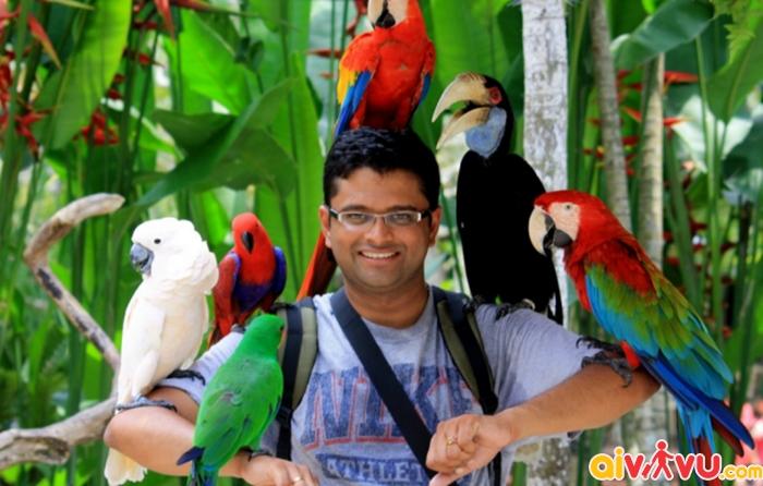 Muốn chụp ảnh với chim trong vườn chim Kuala Lumpur, bạn phải đến một khu vực chụp ảnh riêng