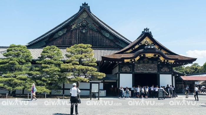 Đền Meiji - Tokyo