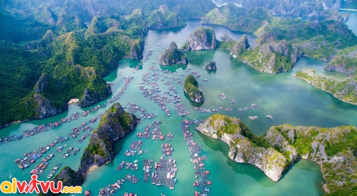 Đi du thuyền tại Vịnh Lan Hạ
