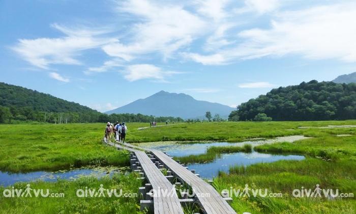 Công viên quốc gia Oze Fukushima