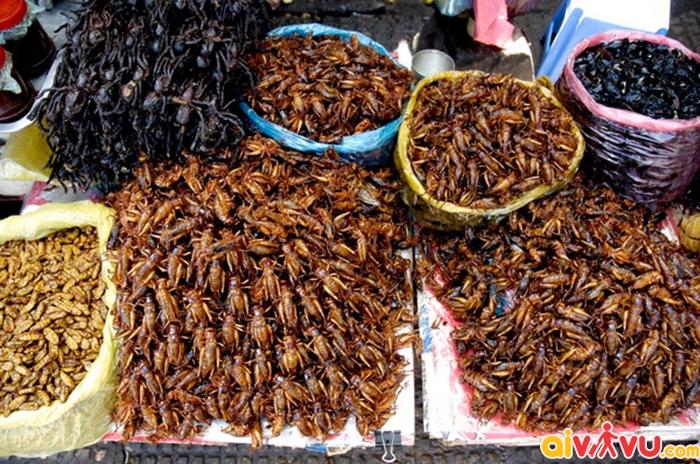 Các món côn trùng là đặc sản của Campuchia