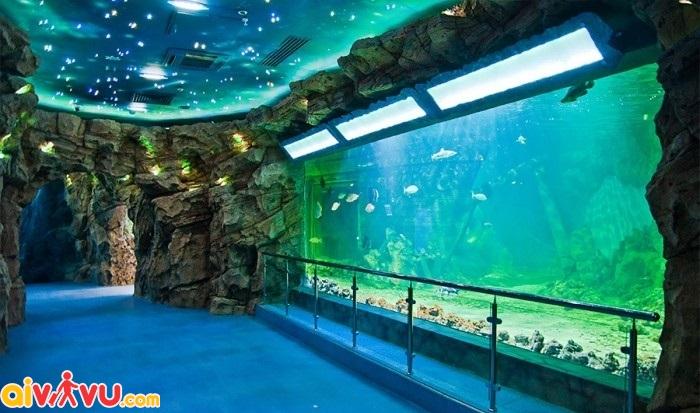 Oceanarium nơi du khách ngắm nhìn đại dương ngay trong khi mua sắm