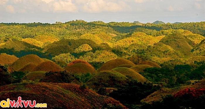 Đảo Bohol có vẻ đẹp như trong truyền thuyết với đồi Chocolate nhấp nhô