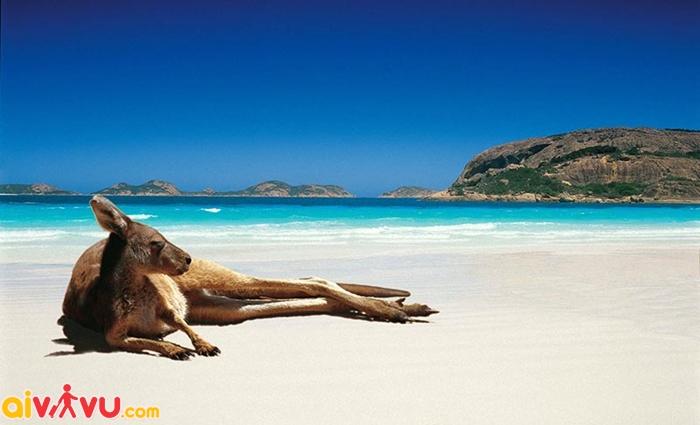 Mùa hè là thời điểm lý tưởng để du lịch Úc