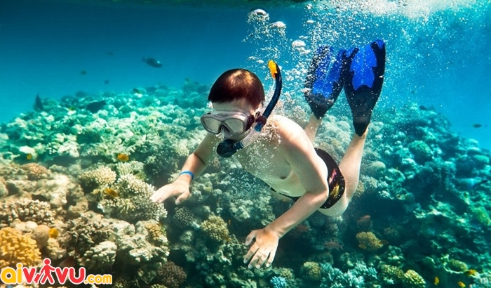 Du lịch Philippines đã đời, vé Cebu rẻ thôi rồi - chỉ từ 70 USD
