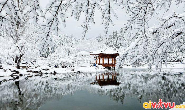 Ngắm tuyết rơi tại Hàn Quốc lãng mạn