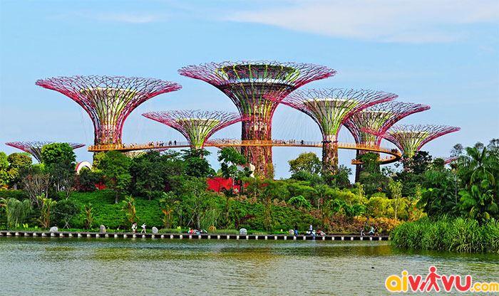 Vườn nhân tạo khổng lồ