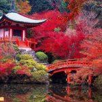 Mùa thu lá đỏ ở Kyoto Nhật Bản