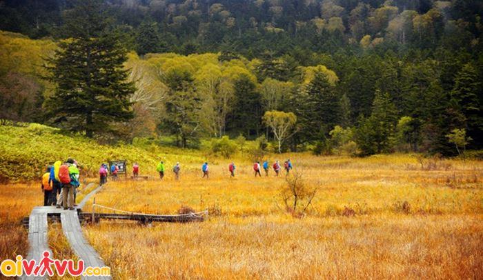 Ghé thăm vườn Kenrokuen mùa thu