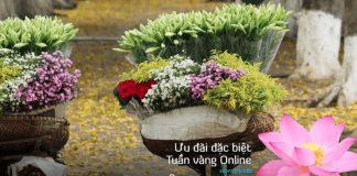 Vietnam Airlines khuyến mãi Tuần vàng onlines