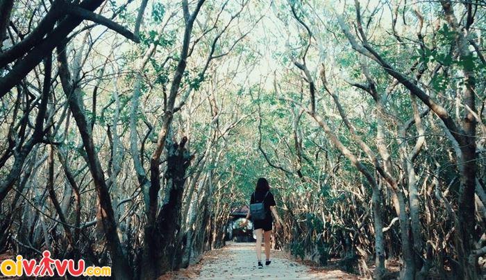 Săn ảnh ở vườn quốc gia tại Huế