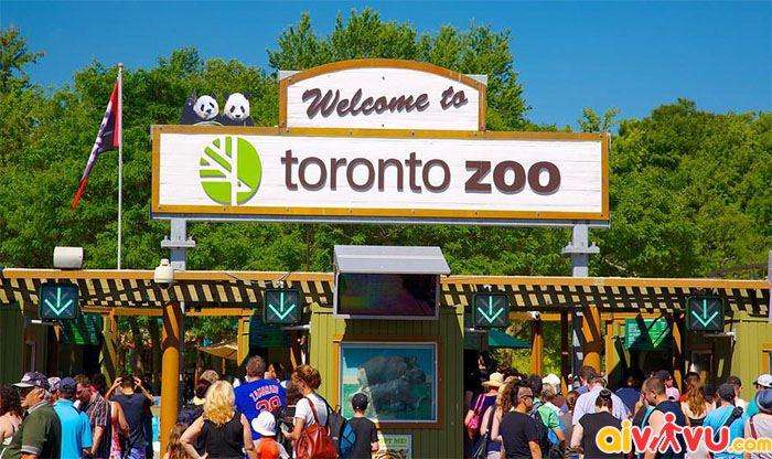 Toronoto Zoo dành cho cả gia đình