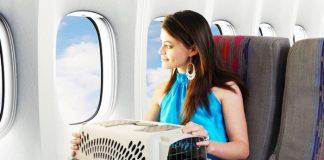 Quy định hành lý đặc biệt của Vietnam Airlines