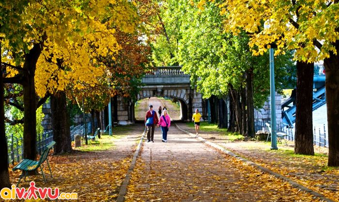 Công viên Brussels mùa thu