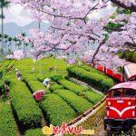 Ghé thăm vùng Shungsan