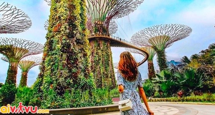 Nên đi du lịch Singapore khu nào?