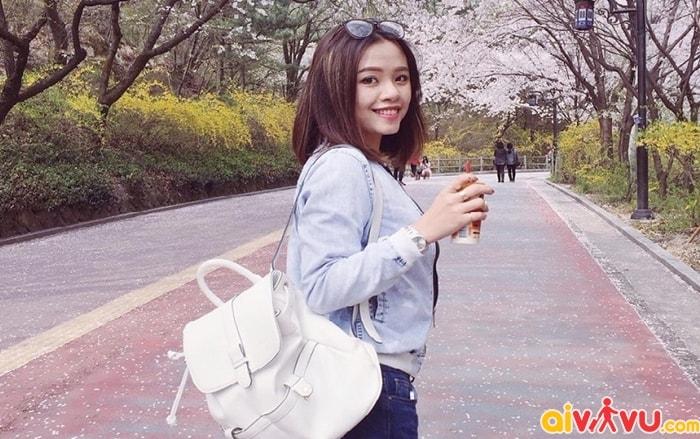 Thời điểm thích hợp đi du lịch Hàn Quốc