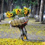 Giá vé máy bay đi Hà Nội năm 2018