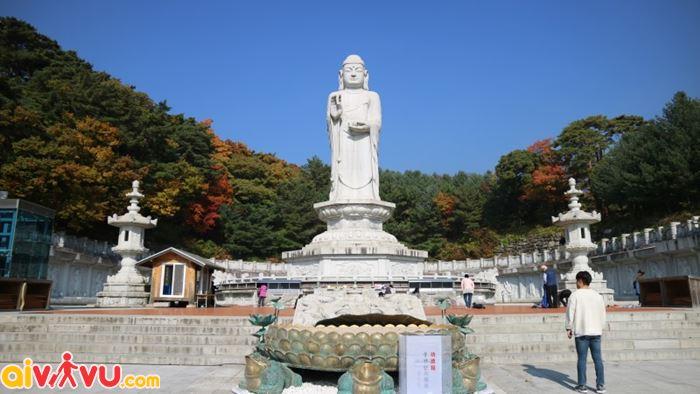 Phật giáo tại Đền Donghwasa