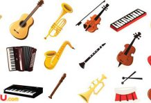 Mang Guitar và các loại nhạc cụ khác lên máy bay