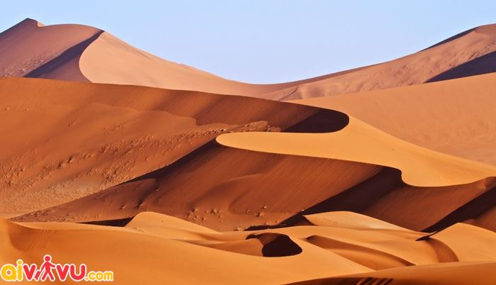 Sa mạc Chihuahuan