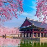 Ghé thăm Hàn Quốc điểm đến hấp dẫn nhất với du khách Việt