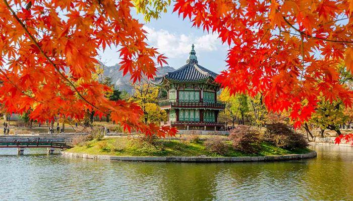 Mùa thu là thời điểm thích hợp nhất để đến Hàn Quốc
