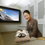 Nữ tiếp viên của Asiana Airlines trong khonag ghế hạng nhất