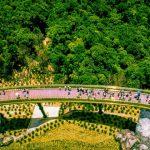 Cầu Vàng top 100 địa điểm hấp dẫn nhất thế giới