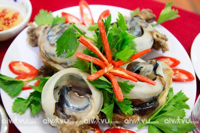 Mắt cá ngừ đại dương - Phú Yên