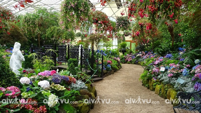 Vườn thực vật Royal