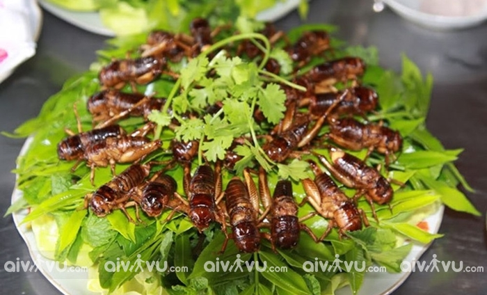 Ăn gì khi đến Siem Reap?
