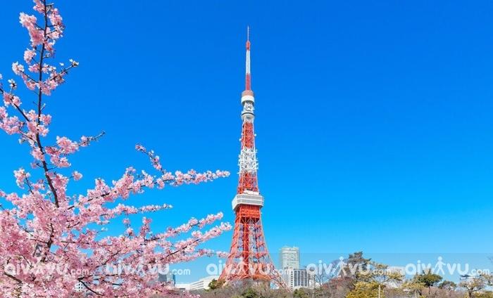 Tháp Tokyo