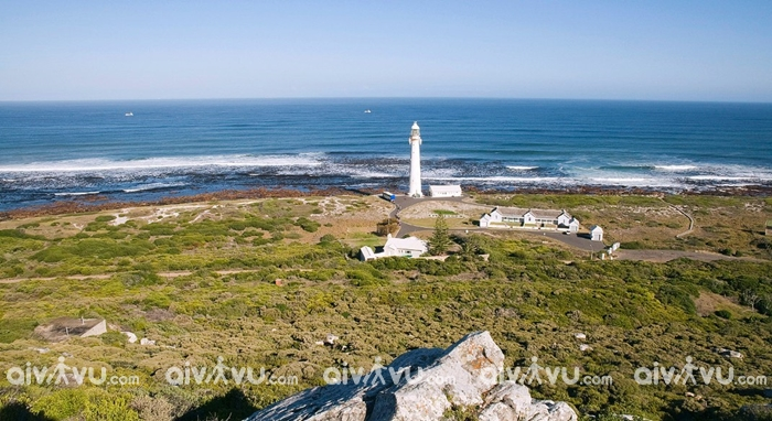 Đảo Robben di sản thế giới - Cape Town
