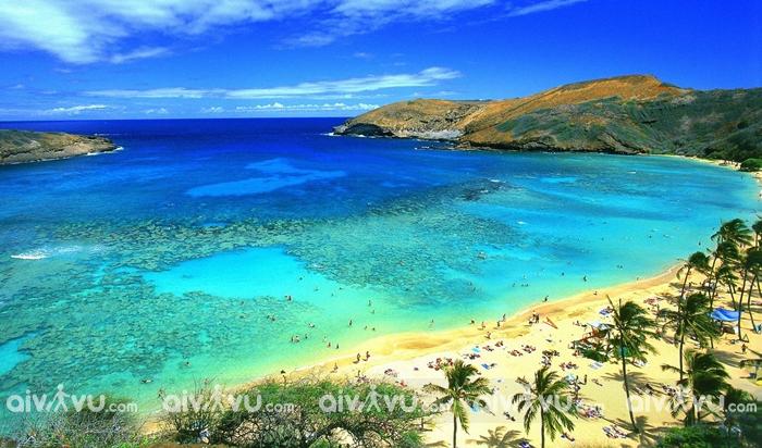 Hòn đảo Maui thiên đường của vùng Hawaii