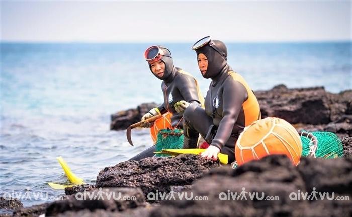 Hoạt động giải trí lặn cùng hải nữ ở đảo Jeju