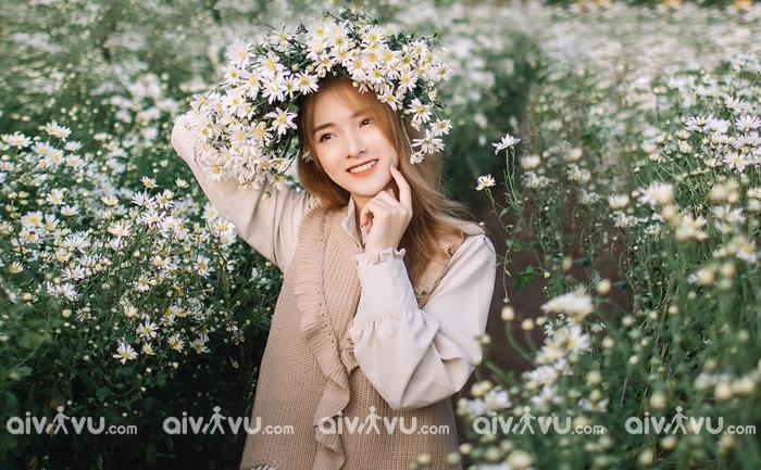 Cúc họa mi tại Làng hoa Nhật Tân