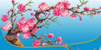 Vietnam Airlines, Bamboo Airways nhận vận chuyển đào, mai Tết 2020