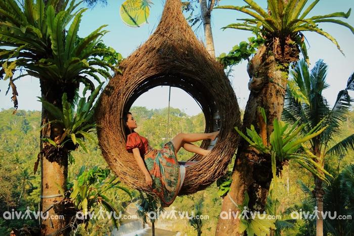 Thị trấn Ubud là nơi sản xuất ra những bức ảnh cực hot khi du lịch Bali