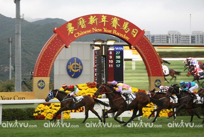 Đua ngựa là lễ hội không thể thiếu trong dịp Tết Nguyên đán ở Hong Kong
