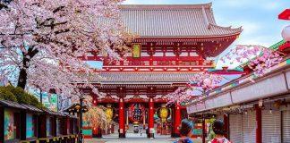 Đến Nhật Bản hòa mình vào màu trắng tinh khôi của tuyết