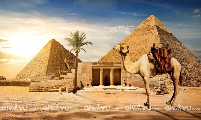 Bảo hiểm du lịch Châu Phi