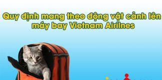 Quy định mang theo động vật cảnh lên máy bay của Vietnam Airlines