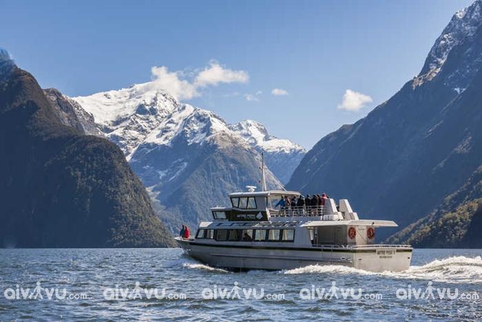 Eo biển Milford Sound hùng vĩ khi du lịch đảo Nam New Zealand