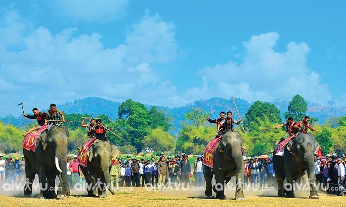 Lễ hội đua voi thu hút sự theo dõi của đông đảo mọi người