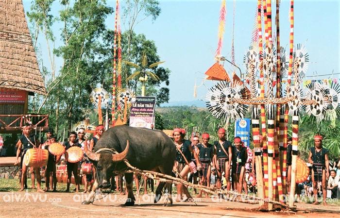 Lễ hội ở Tây Nguyên không thể không nhắc tới lễ hội đâm trâu